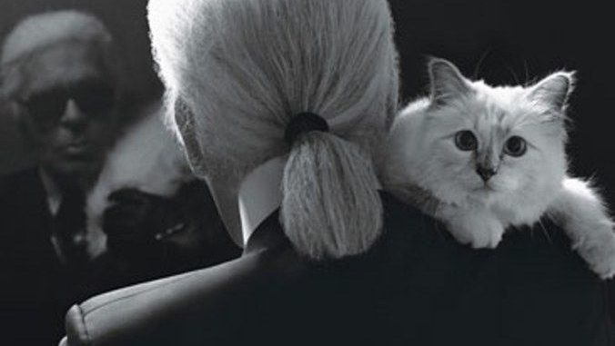 "Karl Lagerfeld's ""Heiress"" Cat Choupette Could Become the World's Richest Cat"